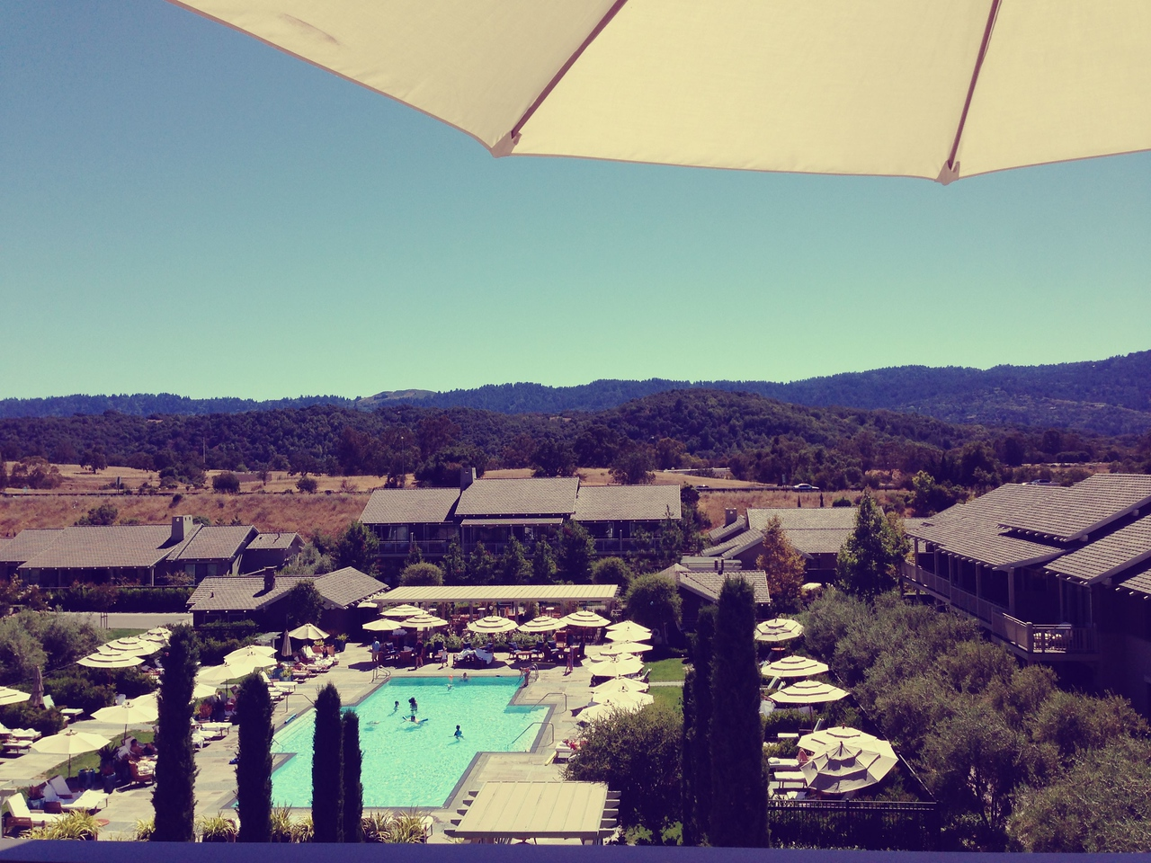 My perch for the day. The Rosewood. PA.